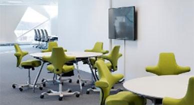 Ergonomic & Project Chairs