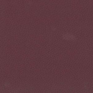 Aubergine – 0676