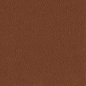 Chestnut – VDOLL10