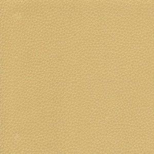 Gold – VDOLL50