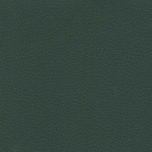 Green – VDOLL11