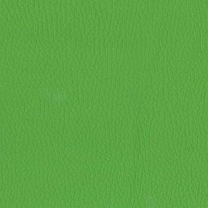 Leaf – 0636