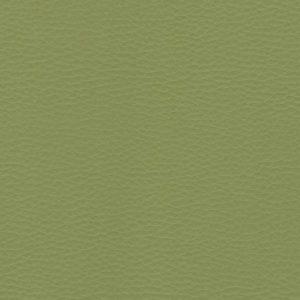 Olive – VDOLL39