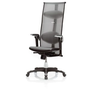 Hag Inspiration 9231 office chair with mesh back height adjustable arms and black base.