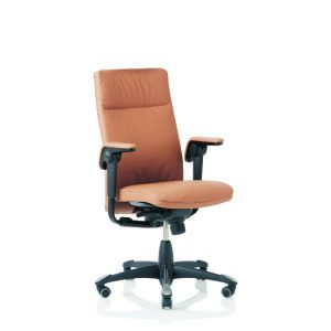 Hag Tribute 9021 office chair in leather with height adjustable arms and black base.