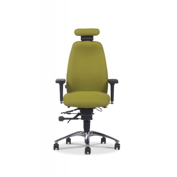 Ergochair adapt 600 range with head rest.