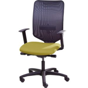 Mesh back office chair with height adjustable arms.
