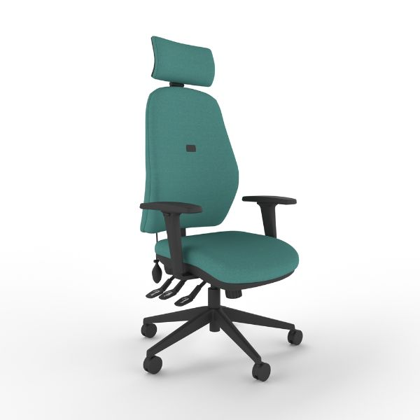 Intro chair with arms and headrest