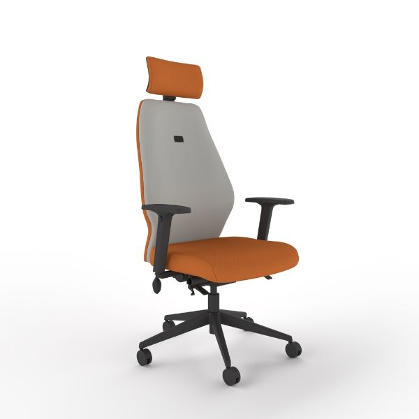 Solo chair with arms and headrest